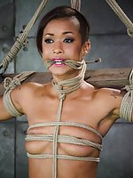 Cutie cums hard in brutal rope bondage