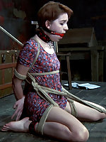 Roped, suspended, gagged, tits clamped, dildoed