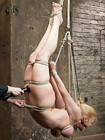 Intense back breaking hogtie and bow suspension