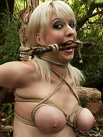 Two naked girls in outdoor bondage