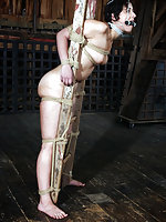 Tight rope bondage, humiliation and degradation